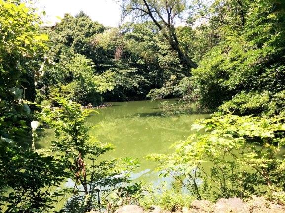 tokyo university sanshiro pond