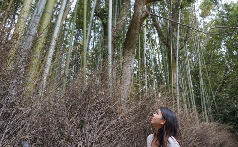 Mouthful of Kyoto