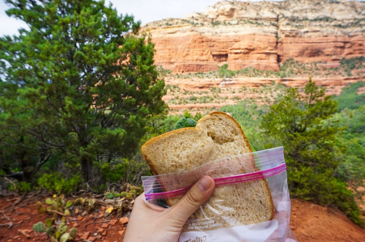 Pack a Sandwich