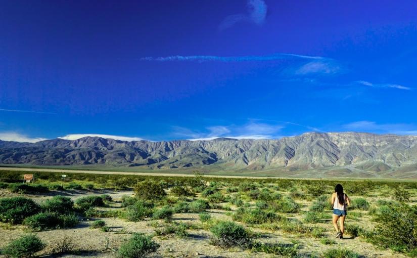 Beautiful Open Plains of Anza-Borrego Desert StatePark